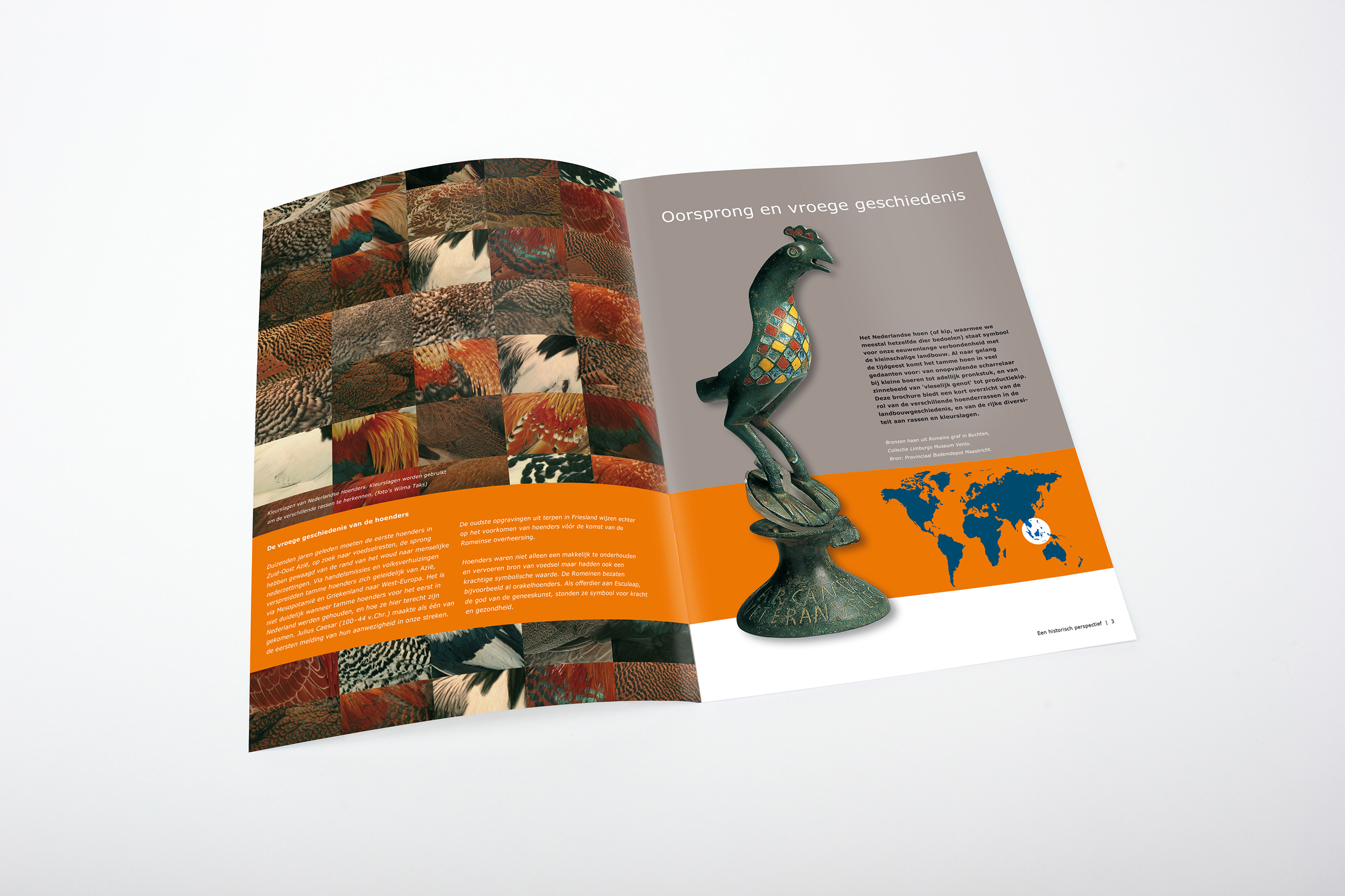 Wageningen University & Research, brochure kip, grafisch ontwerp Neo & Co