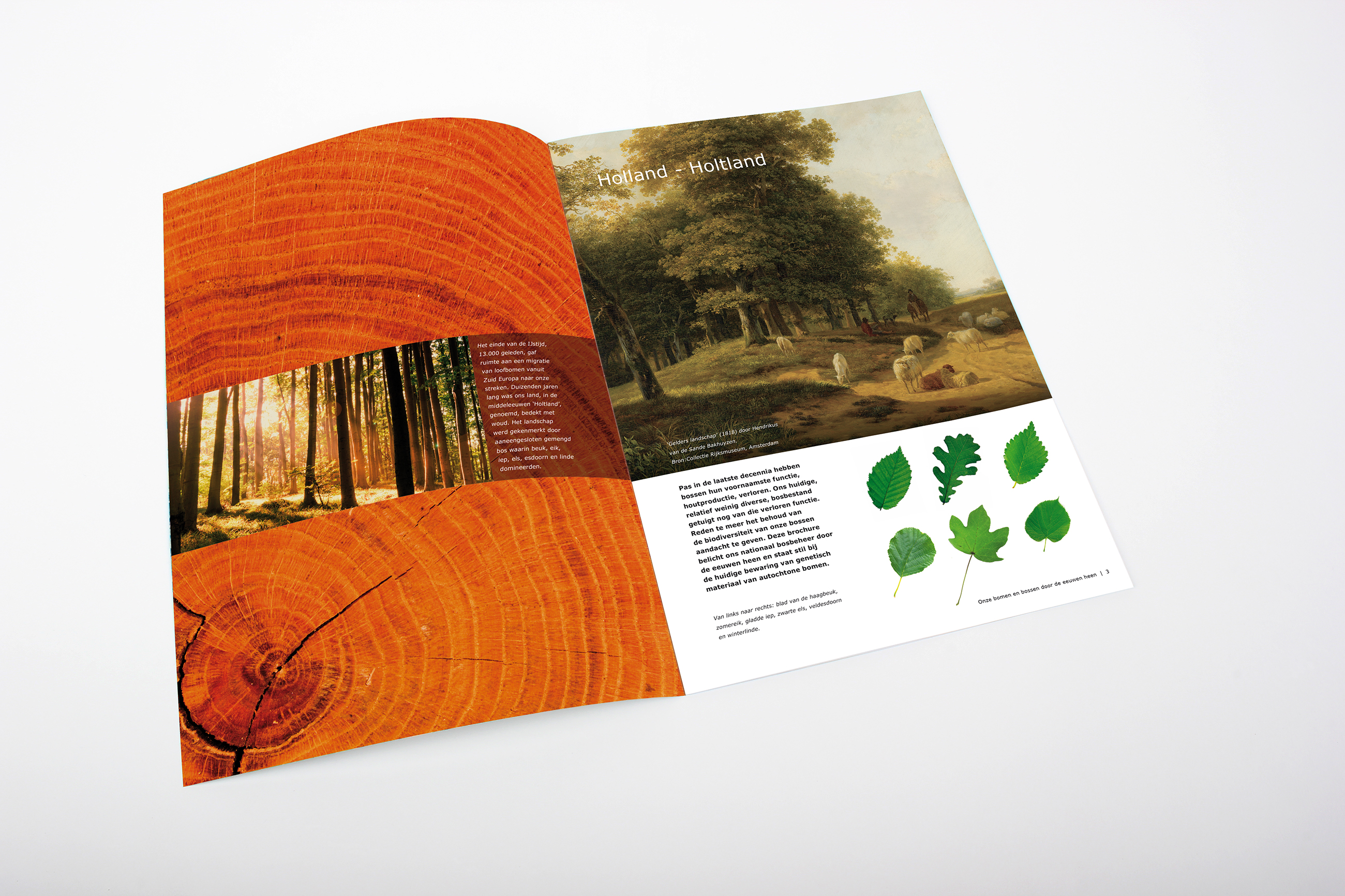 Wageningen University & Research, CGN brochure bomen